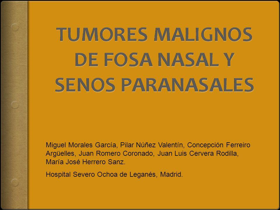 Miguel Morales García, Pilar Núñez Valentín, Concepción Ferreiro Argüelles, Juan Romero Coronado, Juan Luis Cervera Rodilla, María José Herrero Sanz.
