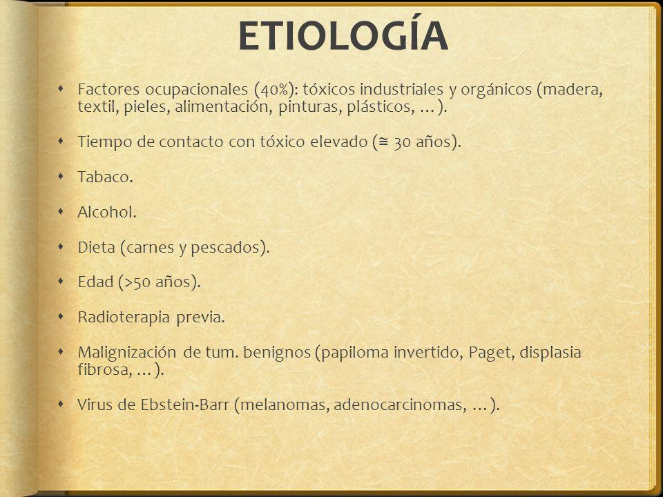 ETIOLOGÍA Factores ocupacionales (40%): tóxicos industriales y orgánicos (madera, textil, pieles, alimentación, pinturas, plásticos, …). Tiempo de con