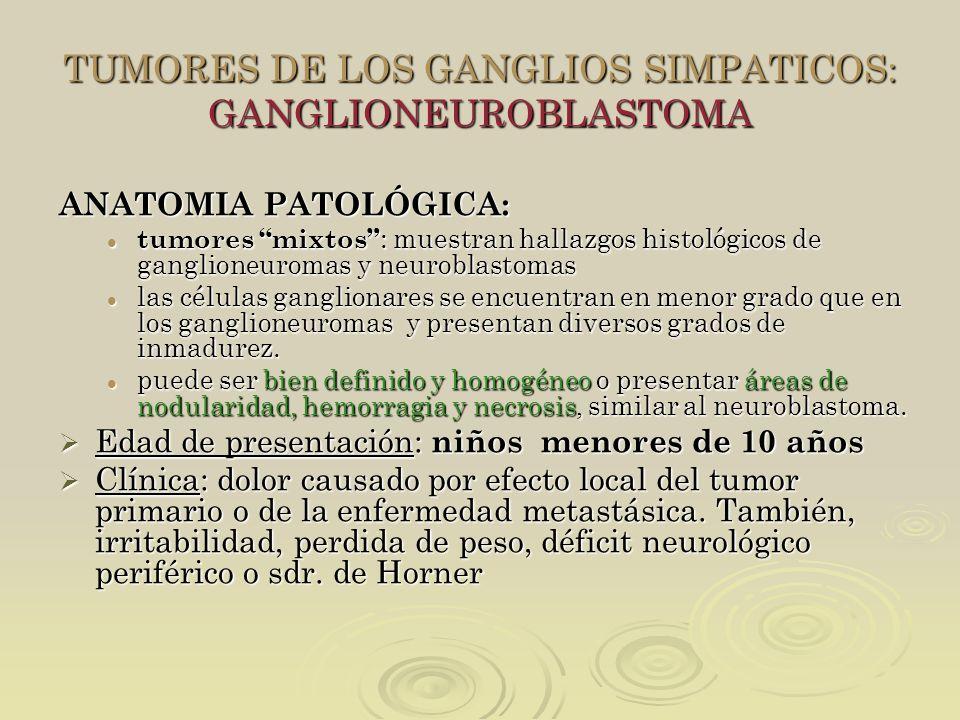 TUMORES DE LOS GANGLIOS SIMPATICOS: GANGLIONEUROBLASTOMA ANATOMIA PATOLÓGICA: tumores mixtos : muestran hallazgos histológicos de ganglioneuromas y ne