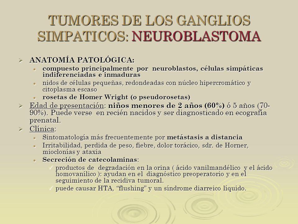 TUMORES DE LOS GANGLIOS SIMPATICOS: NEUROBLASTOMA ANATOMÍA PATOLÓGICA: ANATOMÍA PATOLÓGICA: compuesto principalmente por neuroblastos, células simpáti