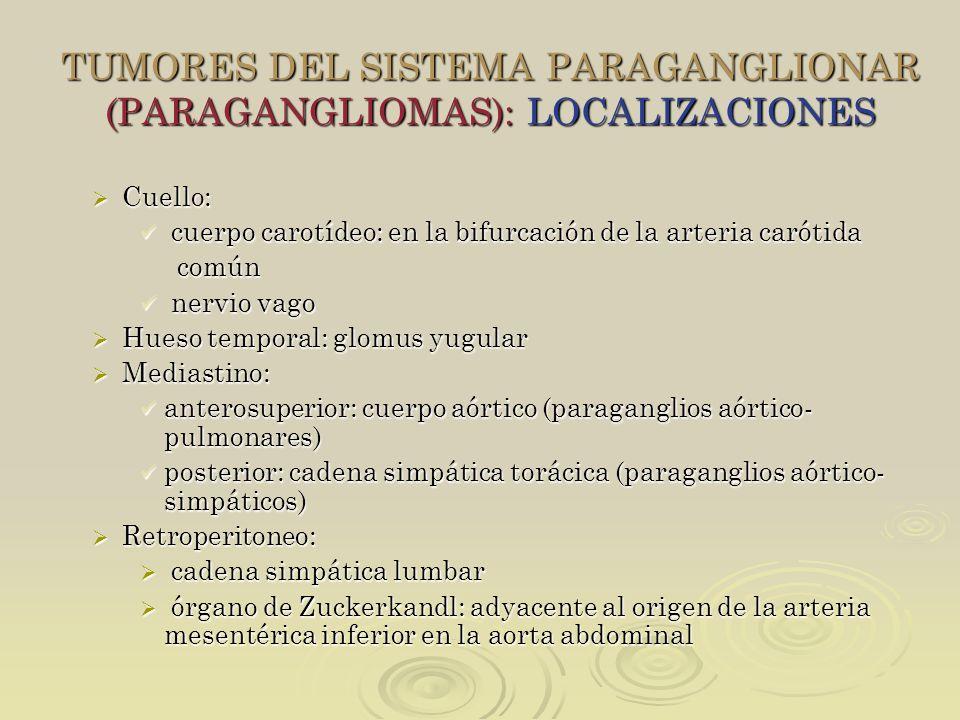TUMORES DEL SISTEMA PARAGANGLIONAR (PARAGANGLIOMAS): LOCALIZACIONES Cuello: Cuello: cuerpo carotídeo: en la bifurcación de la arteria carótida cuerpo