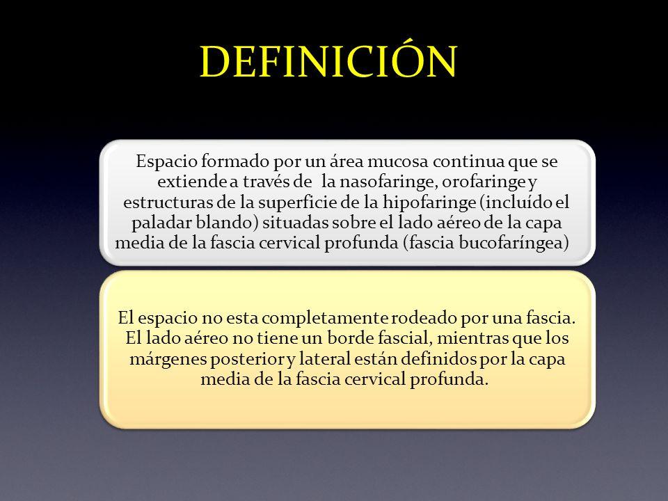 ARTERIA CAROTIDA PRIMITIVA VENA YUGULAR INTERNA VENA YUGULAR EXTERNA HIPOFARINGE (UNION FARINGOESOFAGICA) LUZ SUBGLOTICA LARIGEA CARTILAGO CRICOIDES ESPACIO MUCOSO FARINGEO TC MUSCULO ECM ESPACIO CAROTIDEO ESPACIO CERVICAL POSTERIOR ESPACIO RETROFARINGEO