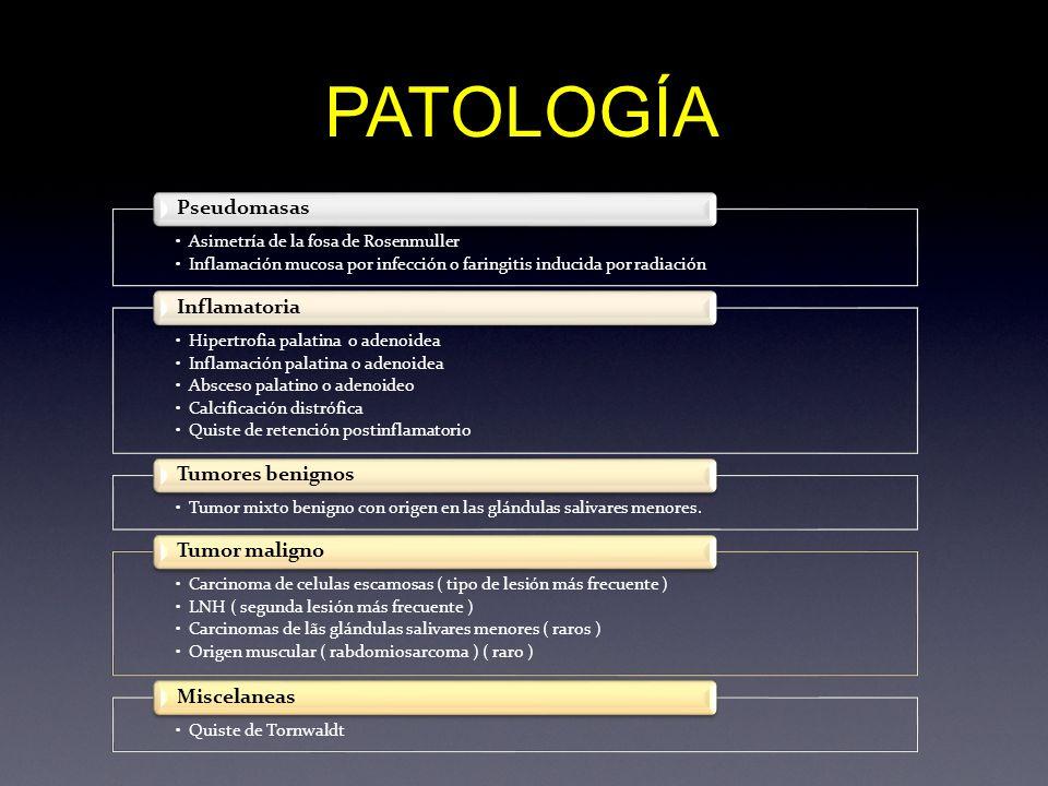 GLANDULA SUBMANDIBULAR MUSCULO ECM ARTERIA CAROTIDA INTERNA VENA YUGULAR INTERNA VESTIBULO LARINGEO BORDE LIBRE DE EPIGLOTIS VALECULA VIENTRE ANTERIOR DEL M.DIGASTRICO CUERPO MANDIBULAR CARTILAGO HIODES ESPACIO SUBMANDIBULAR VENA YUGULAR EXTERNA HIPOFARINGE ESPACIO GRASO PREEPLIGOTICO ESPACIO MUCOSO FARINGEO TC ESPACIO PARAFARINGEO ESPACIO RETROFARINGEO ESPACIO CERVICAL POSTERIOR ESPACIO CAROTIDEO