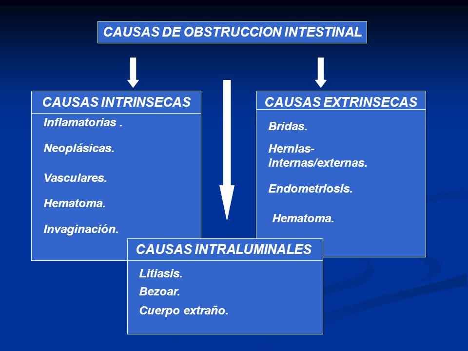 CAUSAS DE OBSTRUCCION INTESTINAL CAUSAS INTRINSECASCAUSAS EXTRINSECAS Inflamatorias. Neoplásicas. Vasculares. Hematoma. Invaginación. Bridas. Hernias-