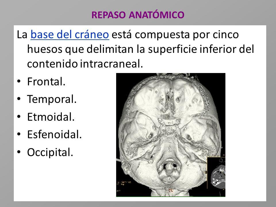 REPASO ANATÓMICO La base del cráneo está compuesta por cinco huesos que delimitan la superficie inferior del contenido intracraneal. Frontal. Temporal