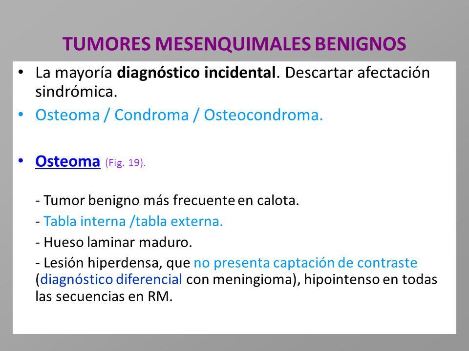 TUMORES MESENQUIMALES BENIGNOS La mayoría diagnóstico incidental. Descartar afectación sindrómica. Osteoma / Condroma / Osteocondroma. Osteoma (Fig. 1