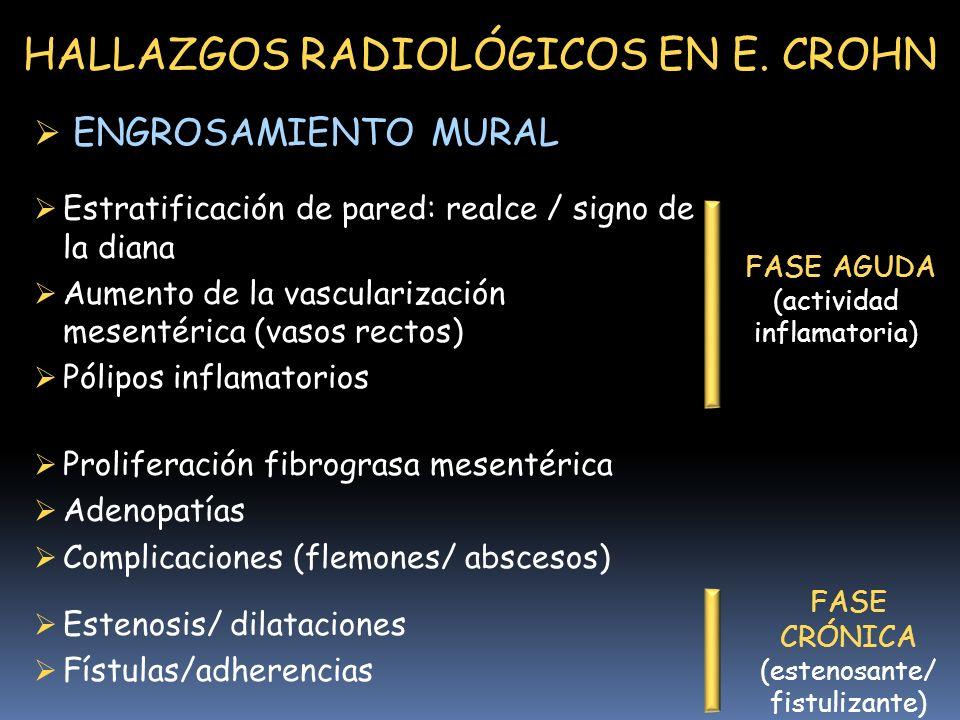 HALLAZGOS RADIOLÓGICOS EN E.