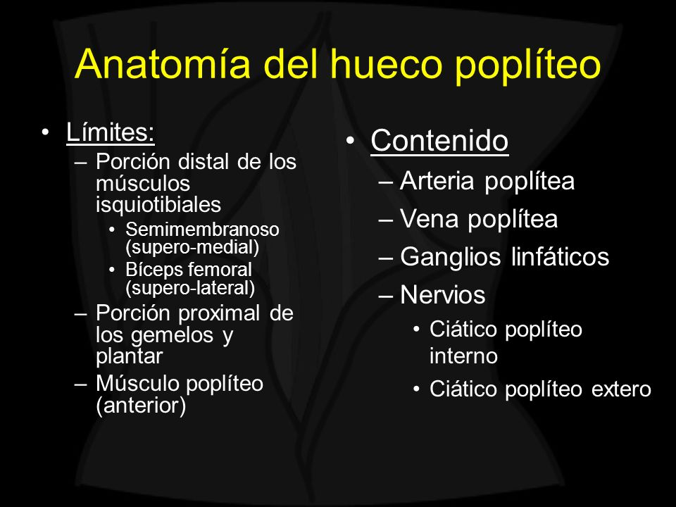 Anatomía del hueco poplíteo Límites: –Porción distal de los músculos isquiotibiales Semimembranoso (supero-medial) Bíceps femoral (supero-lateral) –Porción proximal de los gemelos y plantar –Músculo poplíteo (anterior) SM Bíceps SMT RI Sart Gemelo interno Gemelo externo Plantar