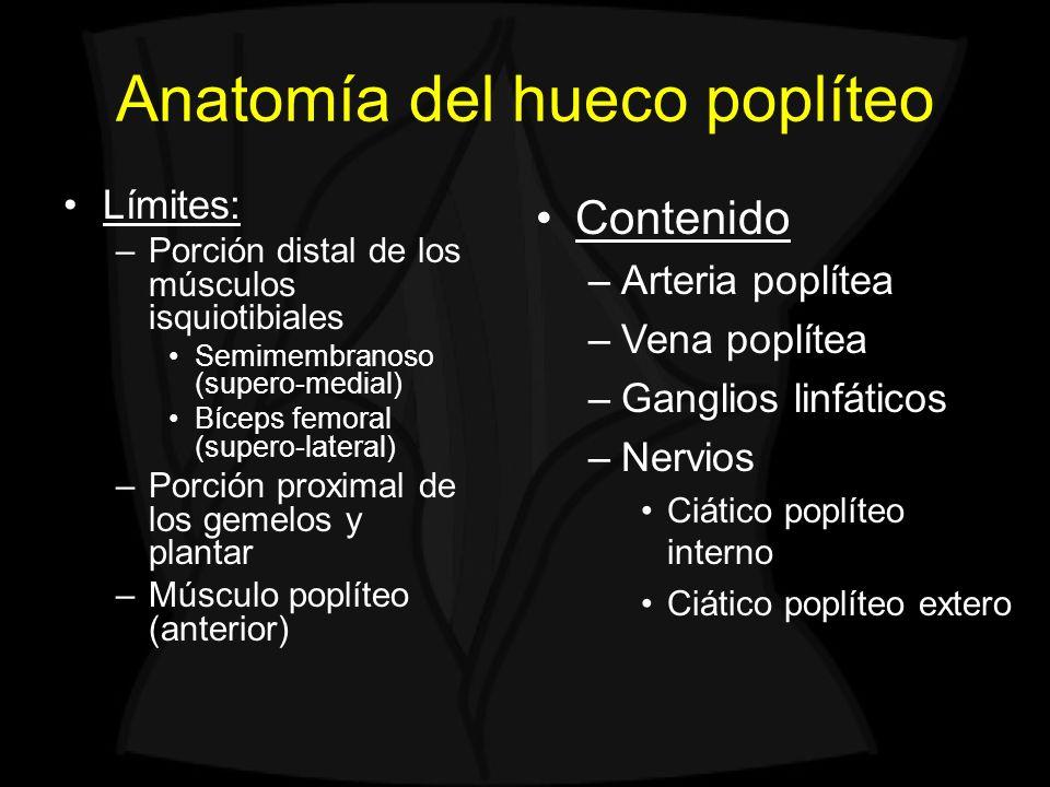 Lesiones quísticas del hueco poplíteo Quiste parameniscal Rotura menisco interno Quiste parameniscal * * 1 SM semimembranoso 2 ST semitendinoso 3 GM gemelo medial 12 3