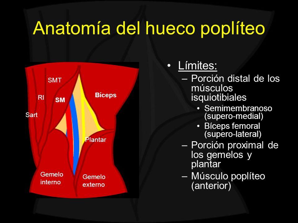 Arteria poplítea Pseudoaneurisma poplíteo Frecuentemente postraumático La pared aneurismática no presenta las tres capas de la arteria