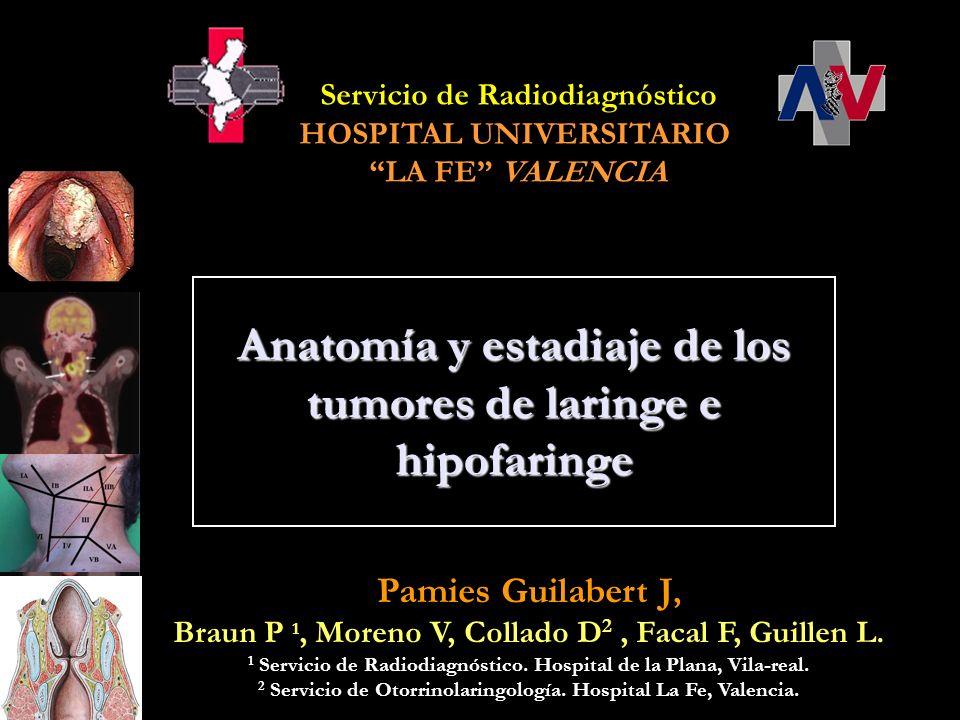 Pamies Guilabert J, Braun P 1, Moreno V, Collado D 2, Facal F, Guillen L. 1 Servicio de Radiodiagnóstico. Hospital de la Plana, Vila-real. 2 Servicio