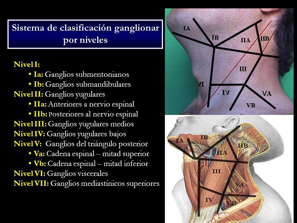 Nivel I: Ia: Ganglios submentonianos Ib: Ganglios submandibulares Nivel II: Ganglios yugulares IIa: Anteriores a nervio espinal IIb: P osteriores al n