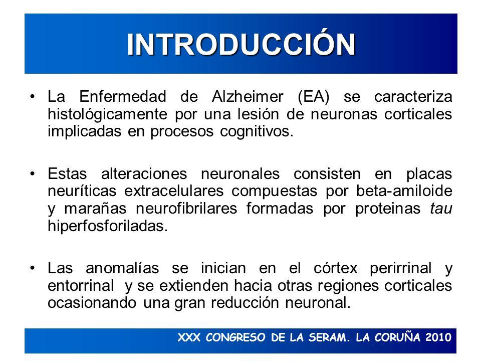 XXX CONGRESO DE LA SERAM. LA CORUÑA 2010 INTRODUCCIÓN La Enfermedad de Alzheimer (EA) se caracteriza histológicamente por una lesión de neuronas corti