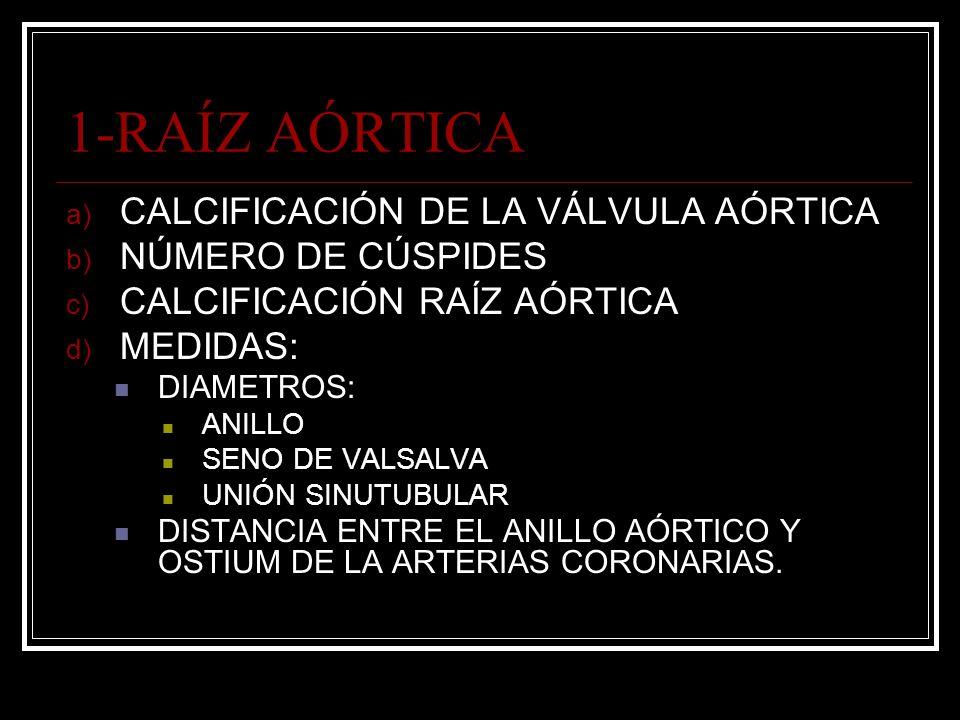 1-RAÍZ AÓRTICA a) CALCIFICACIÓN DE LA VÁLVULA AÓRTICA b) NÚMERO DE CÚSPIDES c) CALCIFICACIÓN RAÍZ AÓRTICA d) MEDIDAS: DIAMETROS: ANILLO SENO DE VALSAL