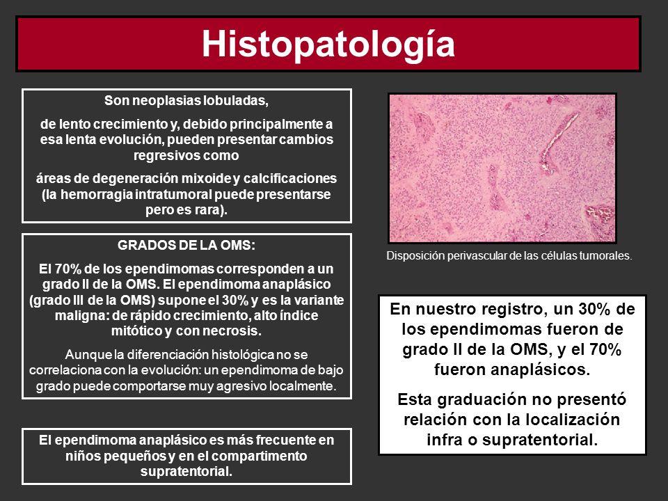 Histopatología Son neoplasias lobuladas, de lento crecimiento y, debido principalmente a esa lenta evolución, pueden presentar cambios regresivos como