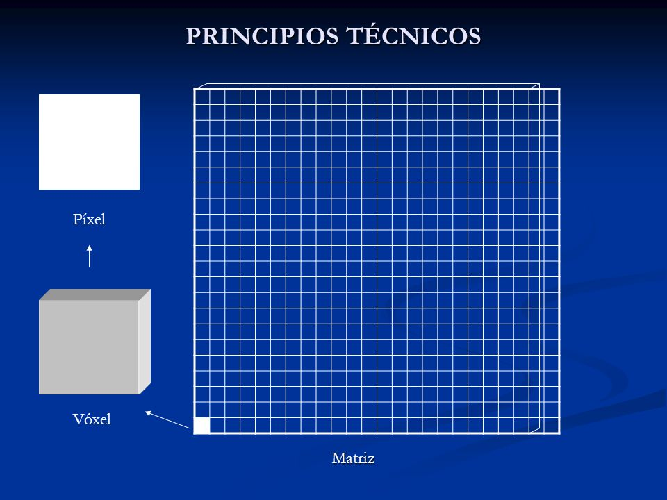 PRINCIPIOS TÉCNICOS Matriz Vóxel Píxel