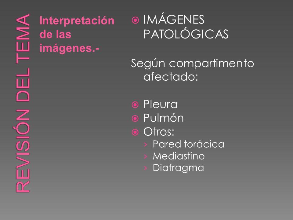 Interpretación de las imágenes.- IMÁGENES PATOLÓGICAS Según compartimento afectado: Pleura Pulmón Otros: Pared torácica Mediastino Diafragma