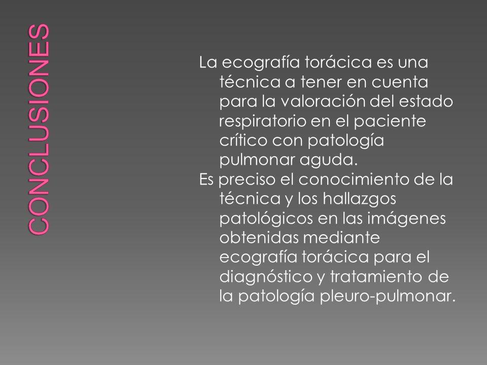 La ecografía torácica es una técnica a tener en cuenta para la valoración del estado respiratorio en el paciente crítico con patología pulmonar aguda.