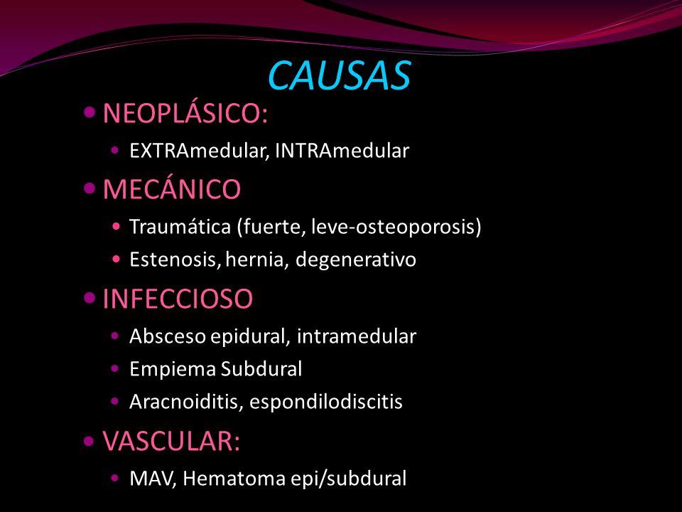CAUSAS NEOPLÁSICO: EXTRAmedular, INTRAmedular MECÁNICO Traumática (fuerte, leve-osteoporosis) Estenosis, hernia, degenerativo INFECCIOSO Absceso epidu