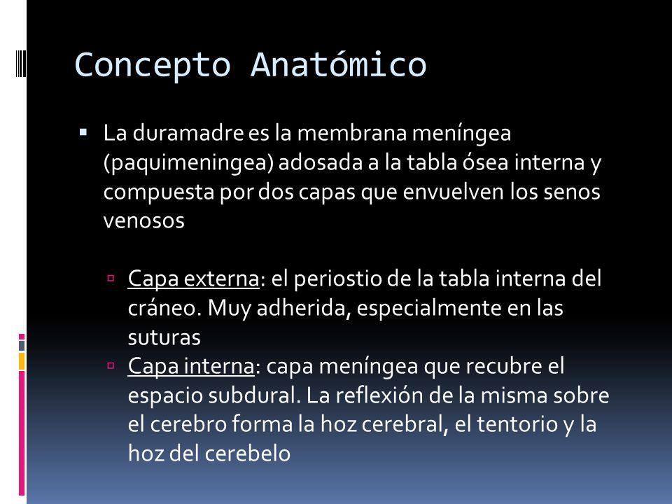 Concepto Anatómico La duramadre es la membrana meníngea (paquimeningea) adosada a la tabla ósea interna y compuesta por dos capas que envuelven los se