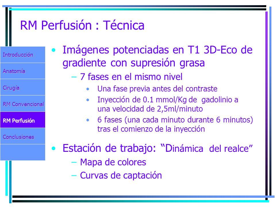 RM Perfusión : Técnica Imágenes potenciadas en T1 3D-Eco de gradiente con supresión grasa –7 fases en el mismo nivel Una fase previa antes del contras