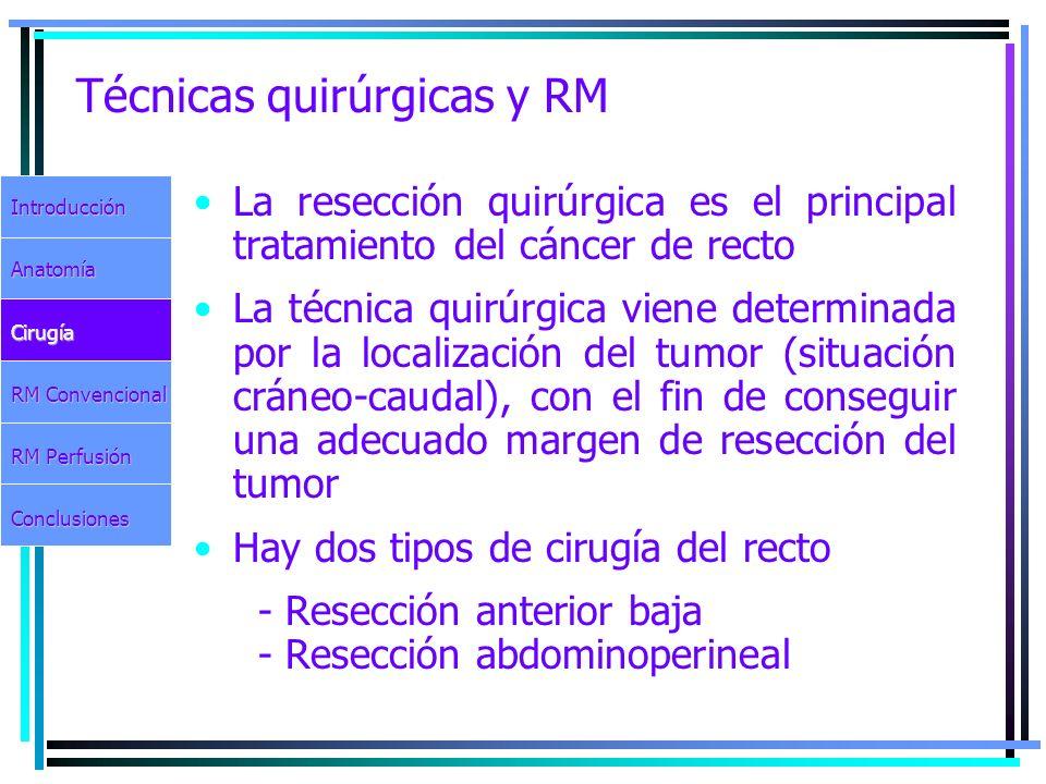 Técnicas quirúrgicas y RM La resección quirúrgica es el principal tratamiento del cáncer de recto La técnica quirúrgica viene determinada por la local