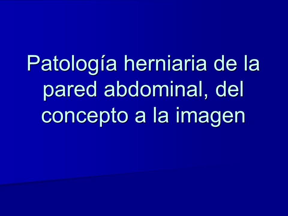 OBJETIVOS Revisión y correlación de la terminología utilizada en la definición de la patología herniaria de la pared abdominal y sus complicaciones