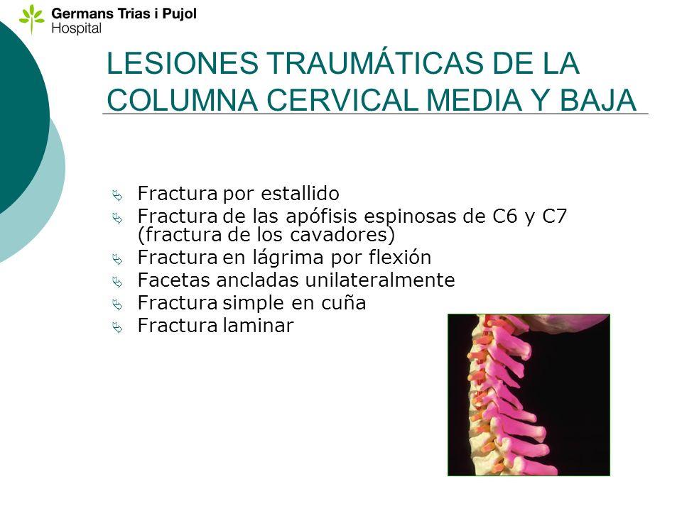 LESIONES TRAUMÁTICAS DE LA COLUMNA CERVICAL MEDIA Y BAJA Fractura por estallido Fractura de las apófisis espinosas de C6 y C7 (fractura de los cavador