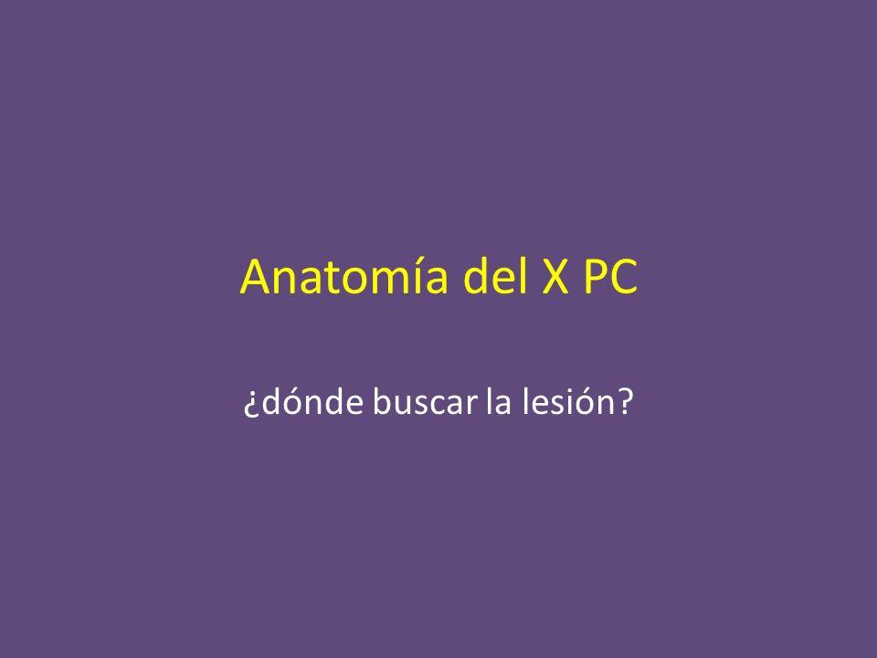 Anatomía del X PC ¿dónde buscar la lesión