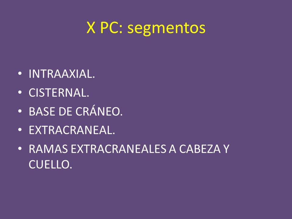 SEGMENTOS CENTRALES INTRAAXIAL: núcleos ambiguus, del tracto solitario y dorsal.
