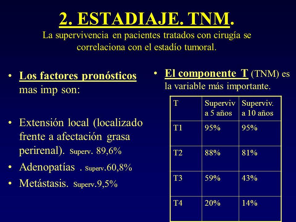 ESTADIAJE TNM.T1a< o = 4cm T1b > 4cm y < o =7cm. T2 >7 cm T3a: Pasa la cápsula renal.