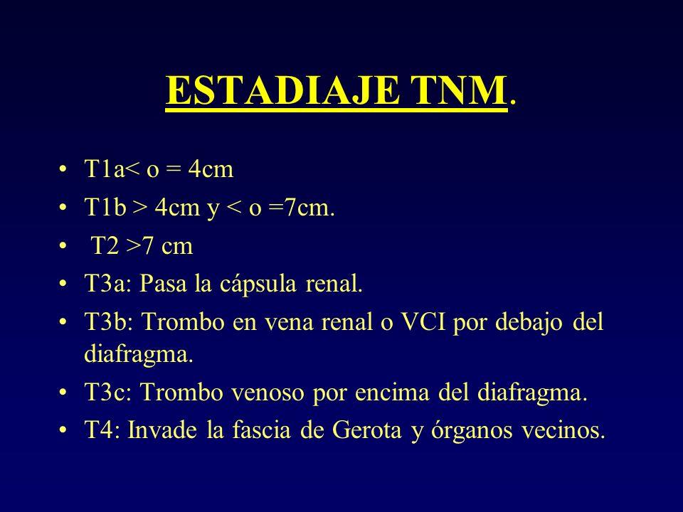 ESTADIAJE TNM. T1a< o = 4cm T1b > 4cm y < o =7cm. T2 >7 cm T3a: Pasa la cápsula renal. T3b: Trombo en vena renal o VCI por debajo del diafragma. T3c: