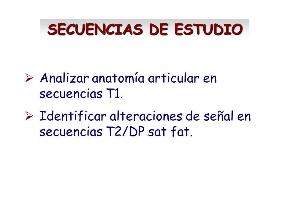 SECUENCIAS DE ESTUDIO Analizar anatomía articular en secuencias T1. Identificar alteraciones de señal en secuencias T2/DP sat fat.