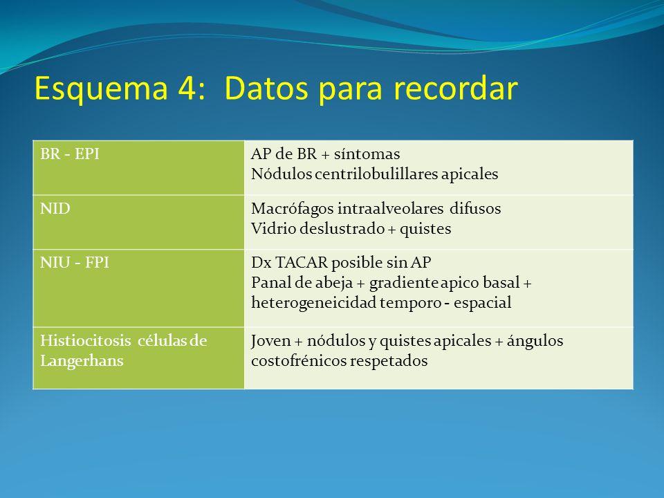 Esquema 4: Datos para recordar BR - EPIAP de BR + síntomas Nódulos centrilobulillares apicales NIDMacrófagos intraalveolares difusos Vidrio deslustrad