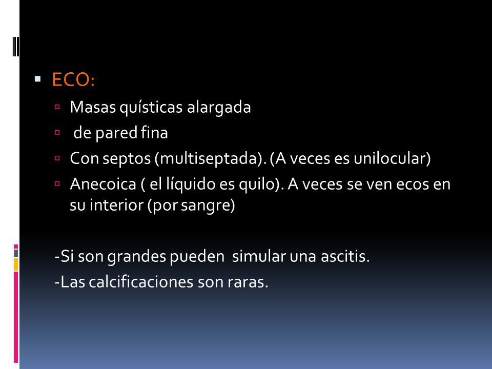 ECO: Masas quísticas alargada de pared fina Con septos (multiseptada). (A veces es unilocular) Anecoica ( el líquido es quilo). A veces se ven ecos en