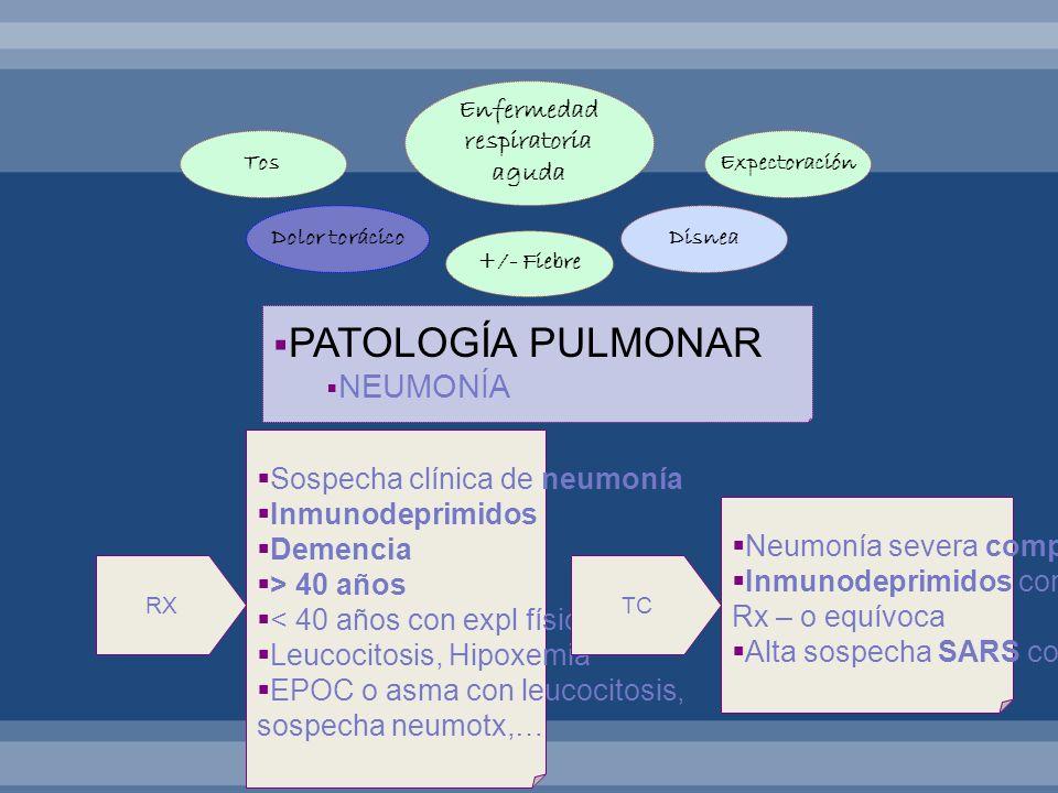 PATOLOGÍA PULMONAR NEUMONÍA Enfermedad respiratoria aguda DisneaDolor torácico ExpectoraciónTos +/- Fiebre RX Sospecha clínica de neumonía Inmunodepri