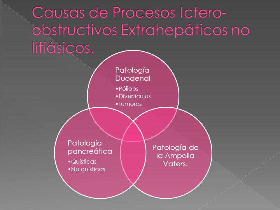 Patología Duodenal Pólipos Divertículos Tumores Patología de la Ampolla Vaters. Patología pancreática Quísticas No quísticas