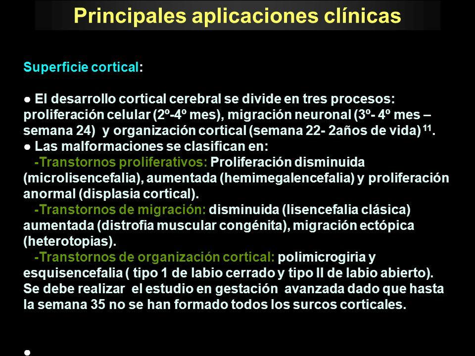 Principales aplicaciones clínicas Superficie cortical: El desarrollo cortical cerebral se divide en tres procesos: proliferación celular (2º-4º mes),