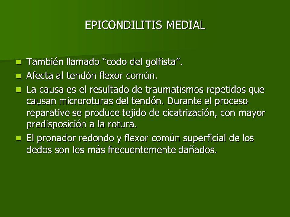 EPICONDILITIS MEDIAL Los hallazgos en ecografía son prácticamente idénticos a los de la epicondilitis lateral: Los hallazgos en ecografía son prácticamente idénticos a los de la epicondilitis lateral: –Engrosamiento del tendón –Hipoecogenicidad difusa y pérdida del patrón fibrilar normal –Áreas hipoecogénicas focales –Focos de calcificación intratendinosa –Irregularidad ósea –Entesofitos en la inserción del tendón –Roturas lineales intrasustancia –Engrosamiento de los tejidos peritendinosos y líquido peritendinoso.