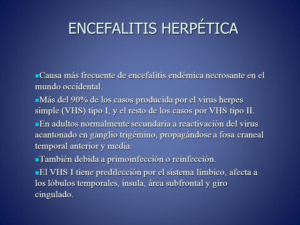 ENCEFALITIS HERPÉTICA Causa más frecuente de encefalitis endémica necrosante en el mundo occidental.