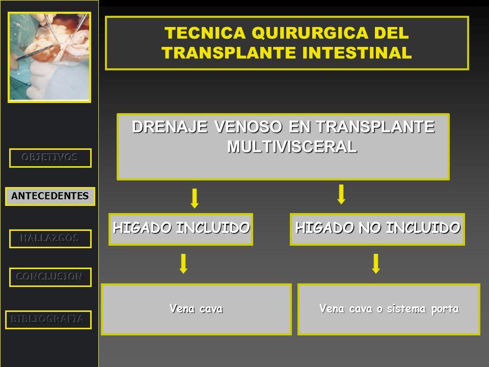 ANTECEDENTES TECNICA QUIRURGICA DEL TRANSPLANTE INTESTINAL DRENAJE VENOSO EN TRANSPLANTE MULTIVISCERAL HIGADO INCLUIDO HIGADO NO INCLUIDO Vena cava Ve