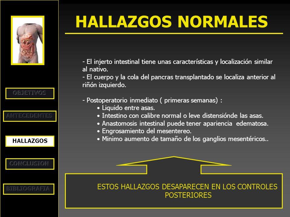 HALLAZGOS NORMALES HALLAZGOS - El injerto intestinal tiene unas características y localización similar al nativo. - El cuerpo y la cola del pancras tr