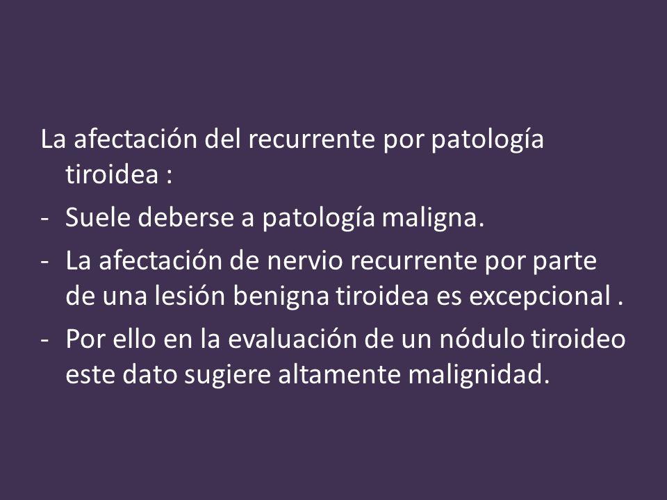 La afectación del recurrente por patología tiroidea : -Suele deberse a patología maligna.