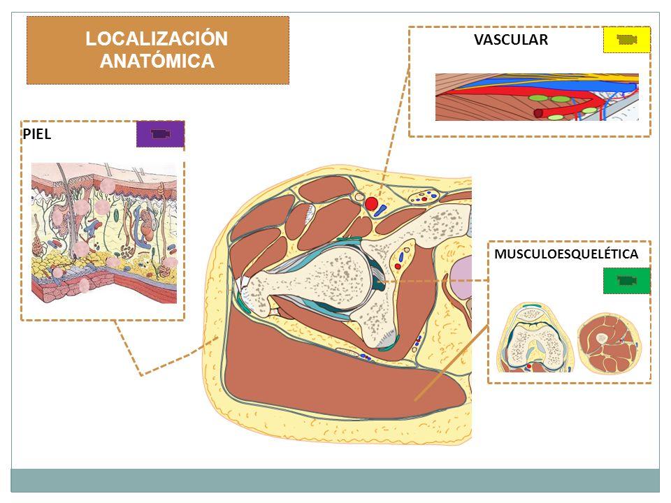 PATOLOGÍA ENCONTRADA A continuación pulsar con el ratón en los iconos para acceder al grupo de patologías que deseas visualizar según su localización anatómica.