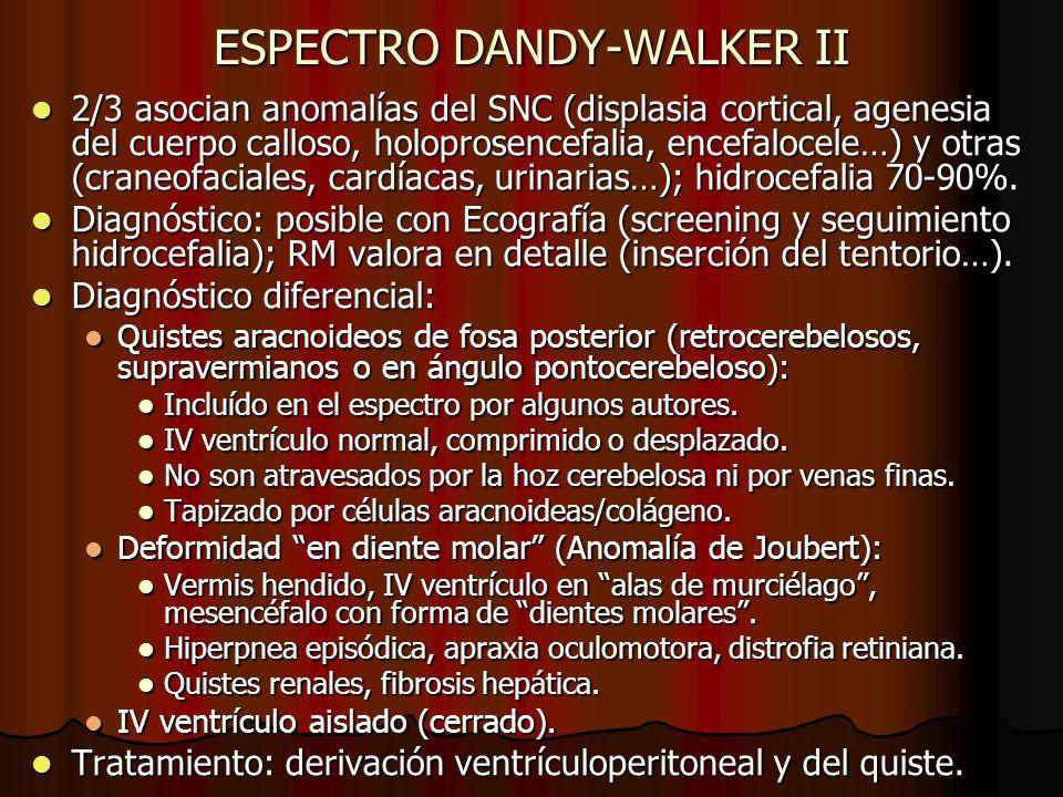 ESPECTRO DANDY-WALKER II 2/3 asocian anomalías del SNC (displasia cortical, agenesia del cuerpo calloso, holoprosencefalia, encefalocele…) y otras (cr