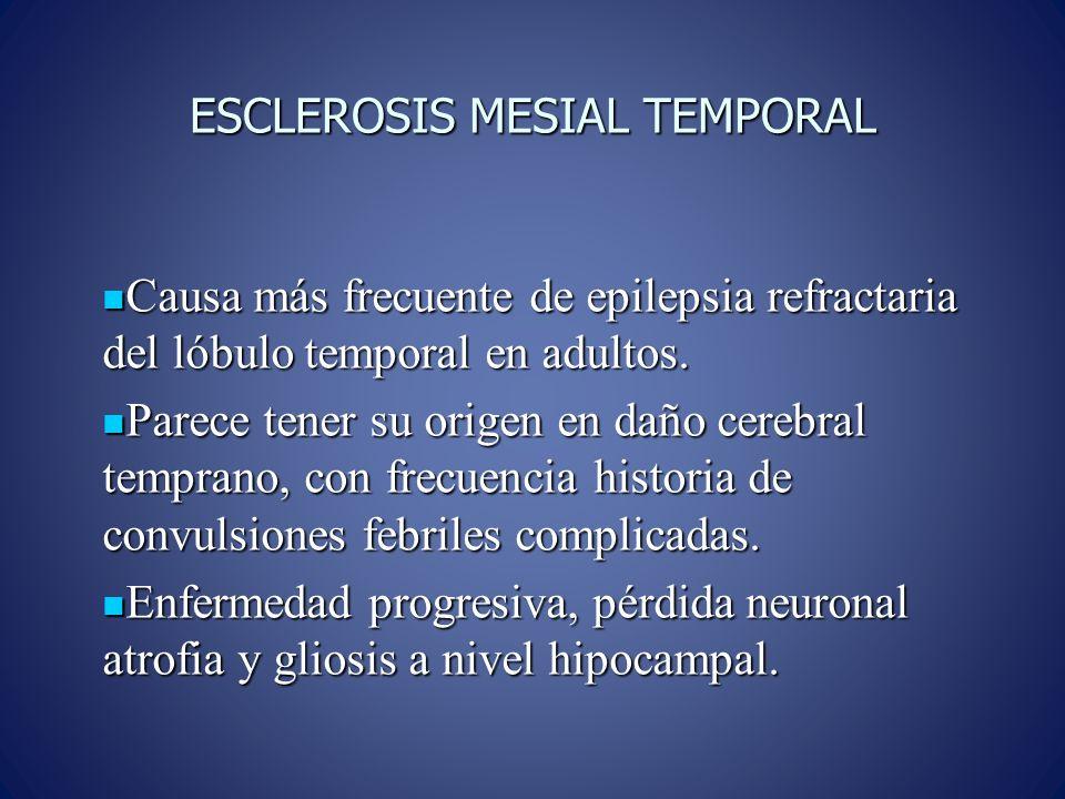 ESCLEROSIS MESIAL TEMPORAL Causa más frecuente de epilepsia refractaria del lóbulo temporal en adultos. Causa más frecuente de epilepsia refractaria d
