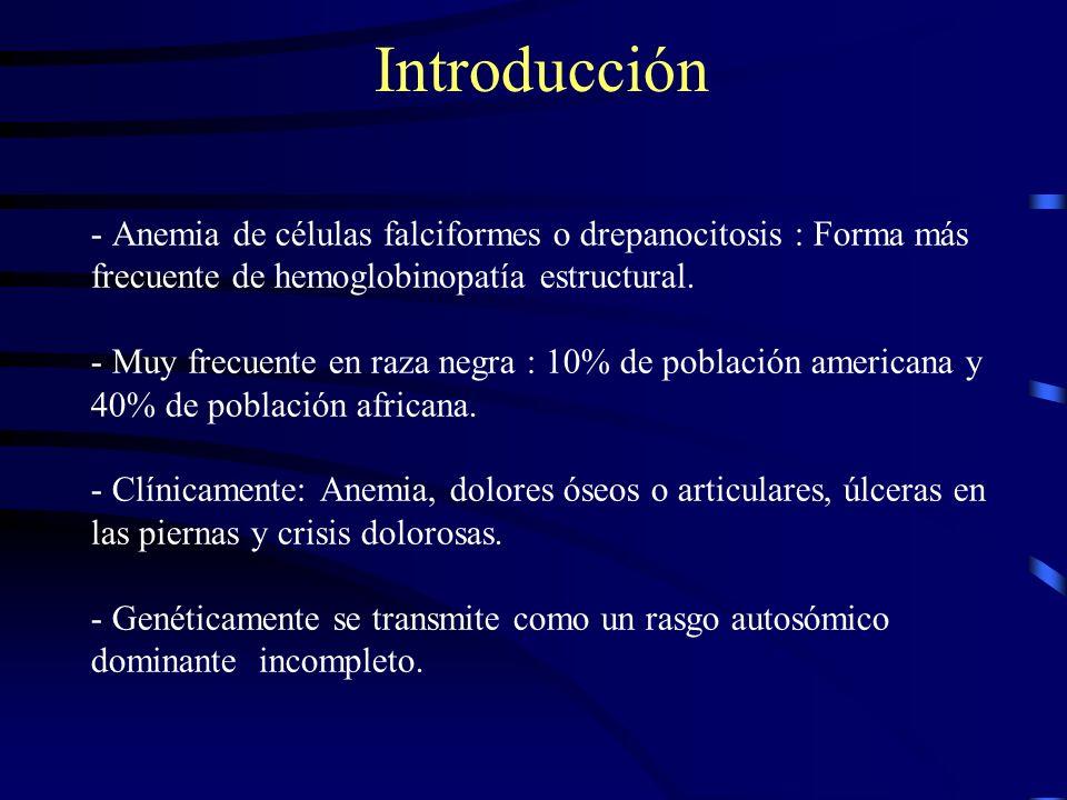 - Anemia de células falciformes o drepanocitosis : Forma más frecuente de hemoglobinopatía estructural.