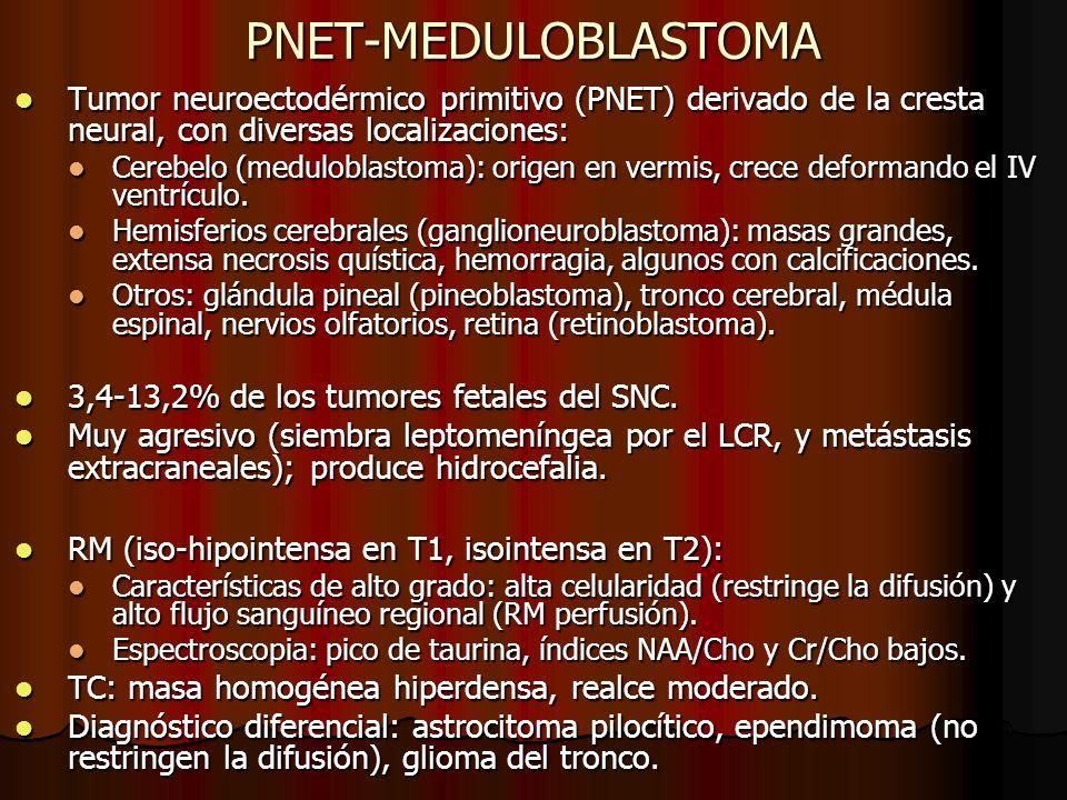 PNET-MEDULOBLASTOMA Tumor neuroectodérmico primitivo (PNET) derivado de la cresta neural, con diversas localizaciones: Tumor neuroectodérmico primitiv
