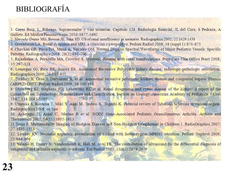 BIBLIOGRAFÍA 23 1. Ceres Ruiz, L. Riñones, Suprarrenales y vías urinarias. Capítulo 124. Radiología Esencial, JL del Cura, S Pedraza, A Gallete. Ed Mé