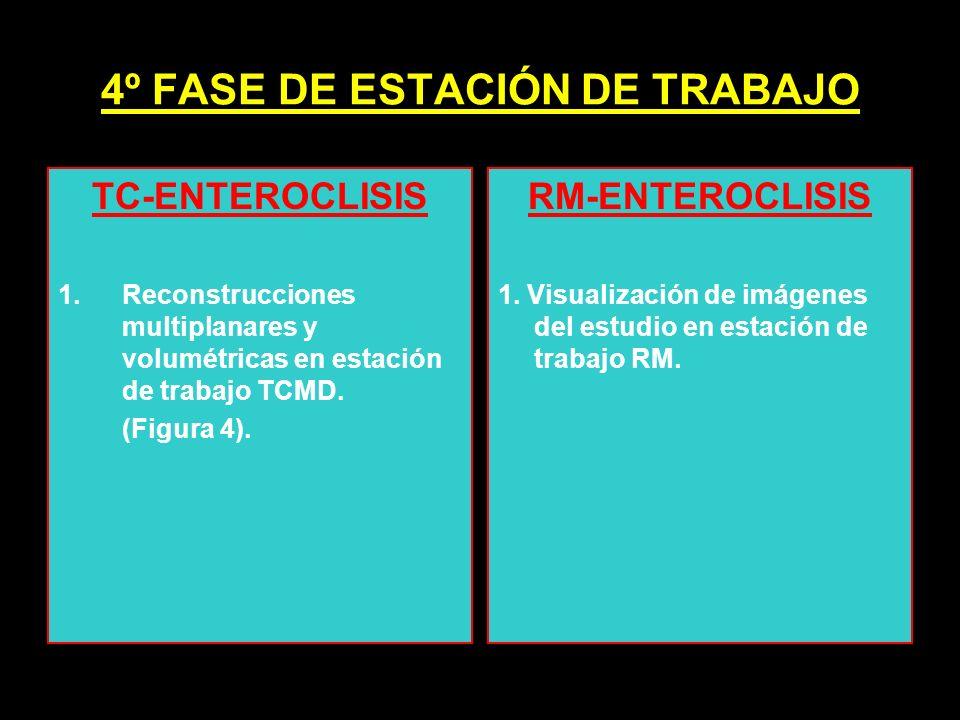 4º FASE DE ESTACIÓN DE TRABAJO TC-ENTEROCLISIS 1.Reconstrucciones multiplanares y volumétricas en estación de trabajo TCMD. (Figura 4). RM-ENTEROCLISI